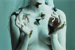Transfiguration (laura makabresku) Tags: laura makabresku photography butterflies pale skin moth women light mystic transfiguration