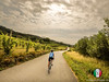Country Road Cycling Light and Shadows (Fabrizio Malisan Photography @fabulouSport) Tags: fabriziomalisanphotography serra serramorenica cycling ciclismo sport woman womancycling womancyclist donna donne femme femmes life lifestyle sports velo landscape landscapes scenery vineyards vineyard country countryside road fahrrad fahrradtour rennrad radfahrer radfahren ciclista rouleur bici active nature paysage italy italien italian paeaggio paesaggi campagna campagne wine vini vigneti vigne travel bike biker bikers biking roadbiking countryroads cyclepath ciclabile canavese agriculture agricoltura bicidacorsa cycliste women tour touring turismo tourism instagram piedmont cyclinginitaly cycletouring cicloturismo pistaciclabile
