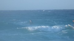 SAM_0902 (axanthoaxantho) Tags: sport griechenland greece ikaria messakti wavesurfing