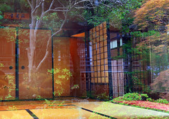 Reflection(Japanese Tea Room and Its Front Garden) (seiji2012) Tags: 茶室 庭 畳 障子 反射 teahouse garden reflection 高幡不動