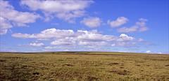 alport moor (Ron Layters) Tags: bleaklow alportmoor remote moor peatmoor moorland open bleak heather grass peat summer sunshine peakdistrict openaccessland england derbyshire thedarkpeak unitedkingdom slidefilmthenscanned slide transparency fujichrome velvia leica r6 leicar6 ronlayters plateau desert