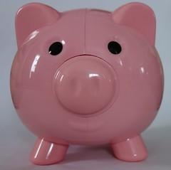 Piggy Bank (Senior Guidance) Tags: piggy bank pink money saving retirement piggybank piggybankcloseup piggybankupclose piggybanklookingatyou pinkpiggybank