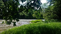 Bieszczady, Poland (trampinthevoid) Tags: mountains polaska bieszczady poland mountain góry summer river san