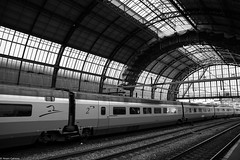 Long (EagleXDV) Tags: city travel train urban architecture trainstation station platform roof road traffic transportation publictransportation building railway railroad blackandwhite bw monochrome netherlands holland glass tunnel modern steel amsterdan renovation