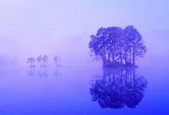 Lake in the morning haze (chikaraamano) Tags: lake morninghaze sky water tree mountain plateau beautifully attractive characteristics magical charm edearlysummer nature outdoor