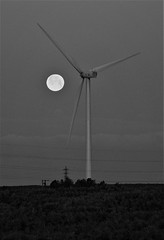 Wind Turbine And Setting Moon - Lynemouth (Gilli8888) Tags: northeast nature nikon p900 coolpix northumberland lynemouth moon lunar turbine windturbine blackandwhite dawn