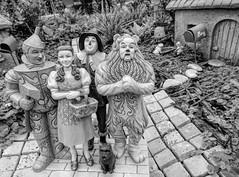Full House in Oz (clarkcg photography) Tags: oz dorthy toto tinman scarecrow blackandwhite flowers garden vegtable radish dog rabbit bee landscape macro fun 7dwf fullhouse crazytuesdaytheme