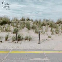Beach (Capture Dreams) Tags: beach sea northsea noordwijk clouds sky dunes