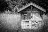 Hut (FSR Photography) Tags: sw schwarzweis schwarzweiss bw blackandwhite blackwhite canon canon400d canondslr monochrome monochrom hütte hut wald wood pflanzen holz holzhütte trees bäume 100v10f fsr fsrphotography