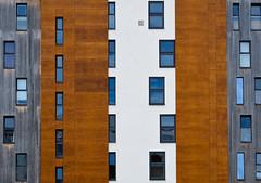 Vertical living (The Green Album) Tags: portishead marina uk apartments vertical floors windows stripes materials patterns