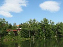 IMG_9014 (germancute) Tags: nature outdoor park plant pond teich landscape landschaft thuringia thüringen