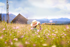 Wanderer (the girl with the blue scarf) Tags: wander girl field flowers mountains escape nature sky clouds sunny day romania hat hidden adventure longing thegirlwiththebluescarf theaanca