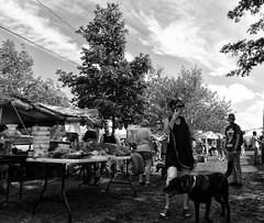 Hello? (BadBlackdog9) Tags: mesopotamia oxroast ohio amishcountry amish mennonite streetphotography peoplewatching fleamarket