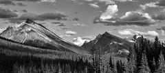 Jasper (CAN_2786-2BW) (ronnie.savoie) Tags: noiretblanc canada jasper alberta jaspernationalpark rockies canadianrockies rockymountains