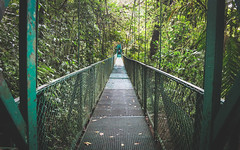 Cloud Forest, Monte Verde, Costa Rica (codeseven) Tags: cloud forest costa rica jungle brigde nature travel wild