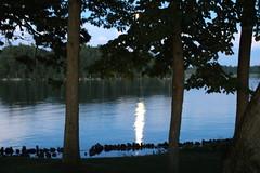 Alex Bay (DKONOP) Tags: ny newyork stlawrenceriver northcountry alexandriabay jeffersoncounty riverrats summer water