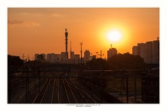 Sunset on railway lines! (Marcos Jerlich) Tags: fencefriday hff july railway lines cityscape city skyline cielo sky golden sunlight sunshine light contrast colorful saopaulo brazil canon canont5i canon700d efs1855mm marcosjerlich