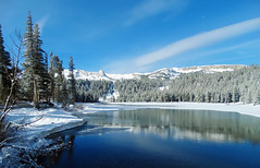 It won't be long, Twin Lakes, CA 9-2017 (inkknife_2000 (8 million views +)) Tags: mammothca springsnowstorm treeswithsnow sierranevadarange freshsnowonground waterreflection usa landscape snow dgraham photo california newsnow morningsnow twinlakes crystalcrag forest iceonlake trees pines firs waterreflections