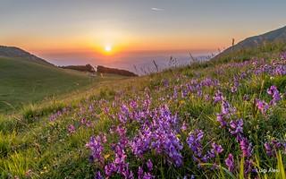 Sibillini - sorge il sole
