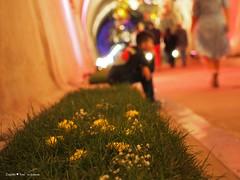 underground-tunnel-floraart_19