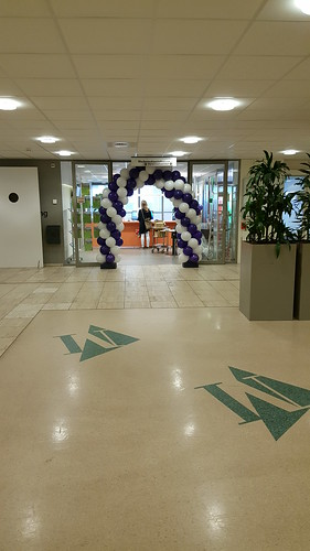 Ballonboog 5m Martini Ziekenhuis Groningen