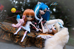 I Am A Big Girl (dreamdust2022) Tags: cute charming sweet loving adorable playful innocent giggles young little elementary school girl yeolume doll lillipop sunshine happy darling cuddles curious dal middleschool aiko chelsea pretty kitty tender kiss hug pure pullip