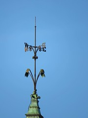 Weathered Vane (ParkerRiverKid) Tags: ansh79 scavenger13 weathervane directional winddirection
