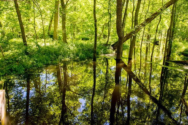 Tippecanoe River State Park - May 30-31, 2017