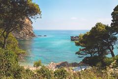 Alonaki Beach at Preveza, Greece (http://www.7th-art.com/) Tags: beach greece alonaki preveza photography 2k17 summer summeringreece travel nature landscape canon markiii sigma art