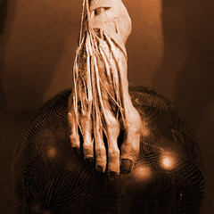 Balanced (Seeing Visions) Tags: 2017 unitedstates us california ca losangeles la expositionpark californiasciencecenter exhibitbodyworldspulse plastination humanremains gunthervonhagens foot tendons muscles toes ankle balanced ball sphere wood sepia square raymondfujioka