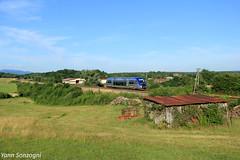 Train de campagne (Lion de Belfort) Tags: sncf ter train chemin de fer ater x 73500 amblansetvelotte l4 ligne 4 poteaux télégrahiques