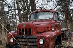 Weathered and Wasting (timvandenhoek1) Tags: international220 ih internationaltruck internationalharvested220truck rusted rust rusting weathered raining rainy rain abandoned dilapidated fieldfind ruralmissouri missouri countryside midwest trees brush weeds cloudy stormy