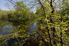 Island-in-Milwaukee-River (eddee) Tags: wisconsin ozaukeecounty nature environment riveredge center newburg milwaukeeriver river water