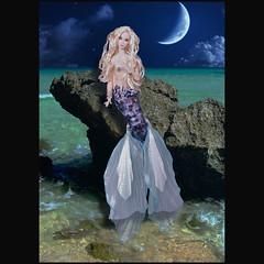 A mermaid and moon (RockWan FR) Tags: eden gretel nuface fashionroyalty fashiondoll integrity mermaid