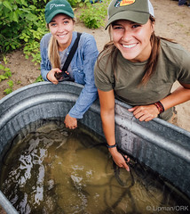 Our volunteers get up close to the eels