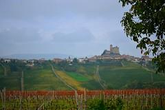 Rodello _18 (sassiitalytours) Tags: wine piemonte castle rodello langhe altalanga vino winetours