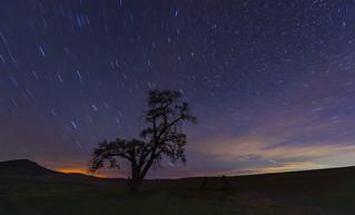 Star Trail (Palouse, WA)