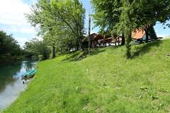 2017-05-12 15-15-08 - IMG_8771 (rudolf.brinkmoeller) Tags: wandern slowenien laibachermoor ljubljanskobarje landschaft natur ljubljanica gostilnarajskivrtnada rajskivrtnada