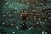 Danbo (4) @danbo/данбо2 (Robert Krstevski) Tags: danbo danboard danbomacedonia danbostory danboamazon danborou 365danbo nikond3300 nikon nikoneurope revoltech robot robertkrstevskiblogspotcom robertkrstevski
