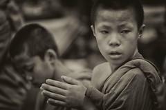 distrattamente (mat56.) Tags: ritratto ritratti portrait portraits ragazzo ragazzi boy boys piccolo monaco little monk preghiera prayer monastero monastery chiangmai watchediluang mani hands rei religione religion buddista buddhist thailandia thailand asia antonio romei mat56 distrattamente