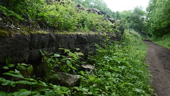 Platform at Wortley station  (Deepcar - Penistone old railway)    June 2017 (dave_attrill) Tags: wortley station railwaystation great central railway platform platformface overgrown deepcar penistone building electrified woodhead sheffield victoria manchester picadilly closed 1970 1955 stocksbridge engine transpennine upper don trail wadsley neepsend dunford bridge allweather cycleway bridleway footpath remains gcr beeching cuts trackbed abandoned june 2017 trans pennine barnsley south yorkshire class76 cycle path