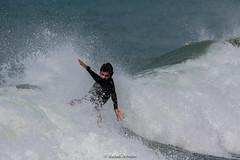 Patos´s Surfing (Rafael Arvelo C.) Tags: pato surf