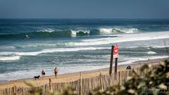 Hossegor #10 (Grind_da_coping) Tags: surfing surf france hossegor surfphotography waves wave beach nikon