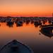 Blissful Dawn
