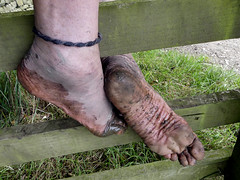 Tough muddy sole (Barefoot Adventurer) Tags: barefoot barefooting barefoothiking barefeet barefooter barefooted baresoles barfuss wetmud anklet autumnbarefooting autumnsoles autumn wrinkledsoles toughsoles muddysoles muddyfeet muddy mud flexiblefeet freedom footprint footprints strongfeet stainedsoles soles toes treeroots earthsoles earthing energy callousedsoles callouses connected healthyfeet happyfeet hardsoles hiking