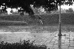 Poor bike in torrent (grepe) Tags: regen weer rain pouring torrent wet bike