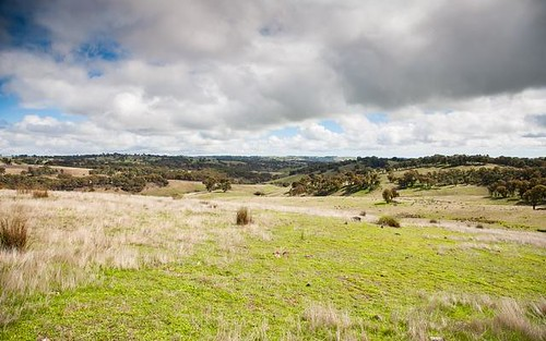 1181 Yalbraith Road, Taralga NSW