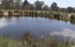 485 Rimbanda Road, Woolbrook NSW