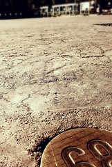 Tagliata sul nascere (Scheggya) Tags: torino