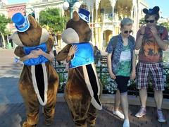 Disneyland Paris 2017 (Elysia in Wonderland) Tags: disneyland paris 2017 elysia birthday 25th anniversary 25 france chip dale meeting meet greet character funny becca lucy pete joe